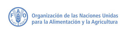 FAO en Colombia – Empleo y adquisiciones